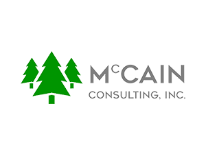 McCain Consulting, Inc